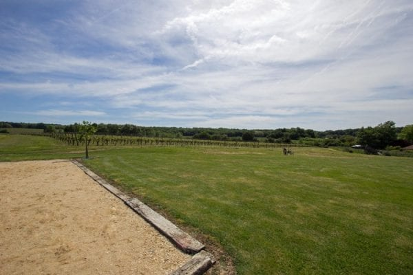 Petanque and views of the vines