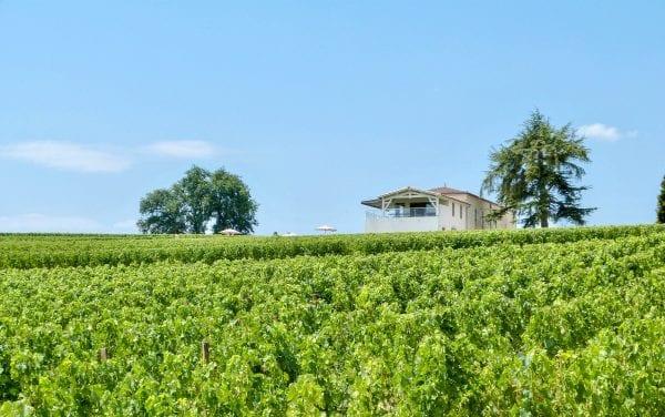 Chateau Vrai Canon Bouche set in the vines