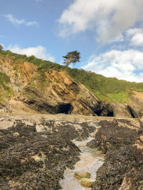 From the rocks and rock pools