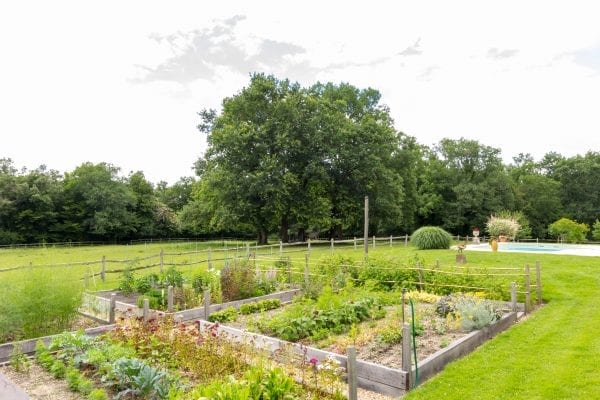 The owners vegetable garden and the pool